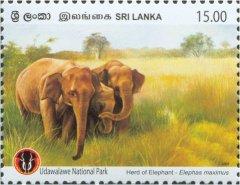 Udawalawa National Park - Sri Lankan Elephant (Elephas maximus Maximus) - Ceylon & Sri Lanka - Mint Stamps